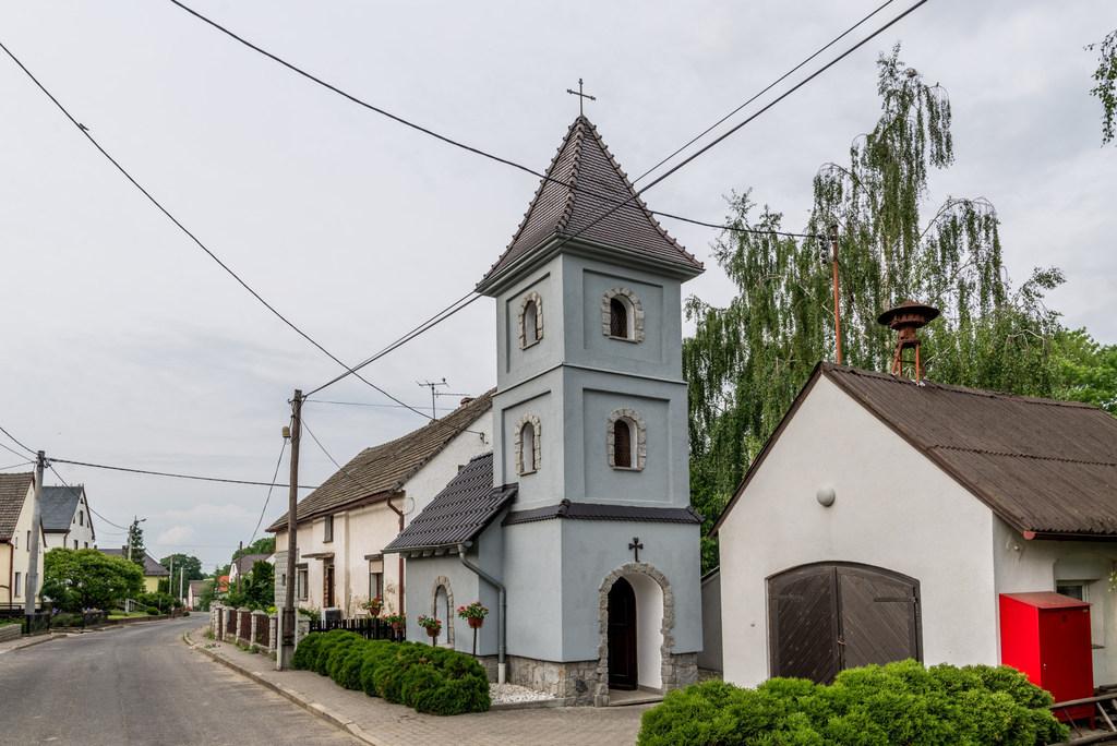 Browiniec_Polski (1).jpeg