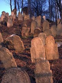 Galerie Cmentarz Żydowski w Białej